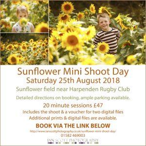 Sunflowerbooking